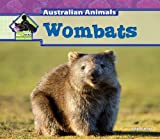 Wombats, Julie Murray, 1617830151