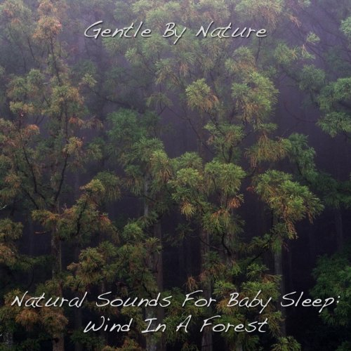(Natural Sounds For Baby Sleep: Wind In A Forest - Single)