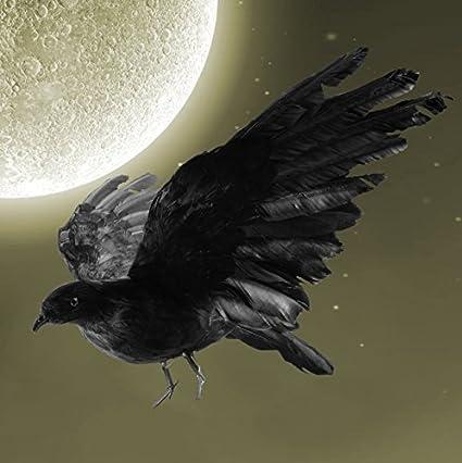 043486ff82037 Amazon.com   IMOSA Realistic Crow Decoration Crow Décor Crow Decoys  Halloween Black Feather Raven 1 Pack Large Crow Prop Outdoor Halloween  Décor   Garden   ...