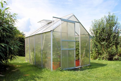 Zelsius Aluminium Gewachshaus Fur Den Garten Inklusive Fundament