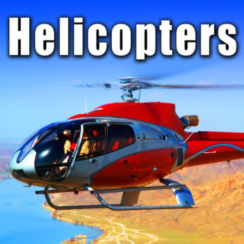 Bell 206b Jet Ranger Helicopter Approaches, Lands & Idles (Jet Bell Ranger Helicopter)
