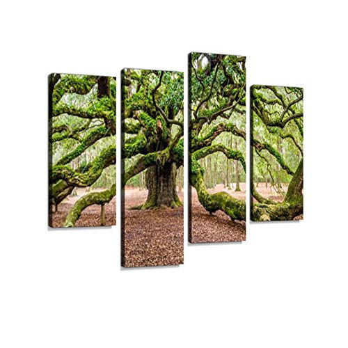 Angel Oak Tree Johns Island Charleston South Carolina SC Canvas Wall Art Hanging Paintings Modern Artwork Abstract Picture Prints Home Decoration Gift Unique Designed Framed 4 Panel