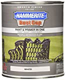 Masterchem Industries 44260 QT Smooth Paint, White