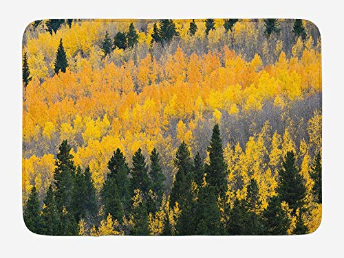 Weeosazg Fall Bath Mat, Colorful Aspen Forest in Colorado Rocky Mountains Western Wilderness USA Theme, Plush Bathroom Decor Mat with Non Slip Backing, 23.6 W X 15.7 W Inches, Green Yellow Grey
