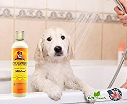 Premium Pets Oatmeal and Neem Oil Dog Shampoo and Conditioner, 17 oz