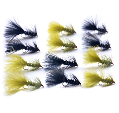 Outdoor Planet 12 Pieces Top Rating Dry/Nymph/Streamer Fly Fishing Flies Trout Fly Assortment