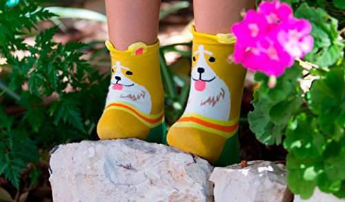 Review SockStory Happy Colorful Cute