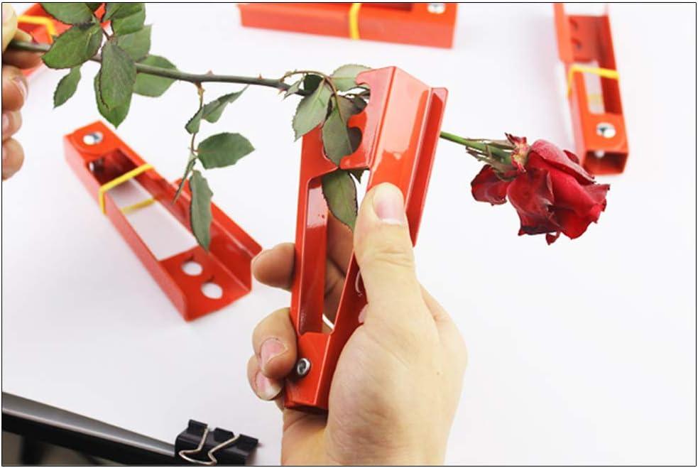 pour Fleurs pour Fleurs pour Fleurs pour Fleurs et Fleurs D/énudeur de Feuilles SANTITY pour Fleurs et Fleurs Outil de d/énudage pour cisailles Florales