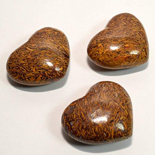 Snake Skin Fossil Stone (Pair 1.9