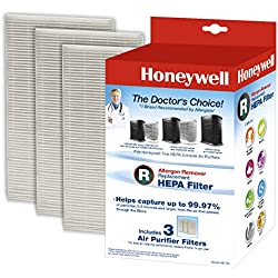 Honeywell Filter R True HEPA Replacement Filter - 1 Pack of 3 filters