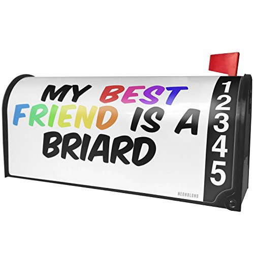(NEONBLOND My Best Friend a Briard Dog from France Magnetic Mailbox Cover Custom Numbers)