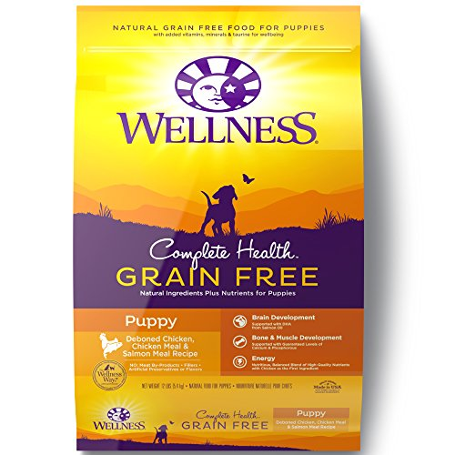 Wellness Complete Health Natural Grain Free Dry Puppy Food, Chicken & Salmon, 12-Pound Bag