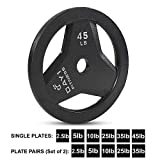 """Day 1 Fitness Cast Iron Olympic 2-Inch Grip Plate for Barbell, 45 Pound Single Plate Iron Grip Plates for Weightlifting, Crossfit - 2"""" Weight Plate for Bodybuilding"""