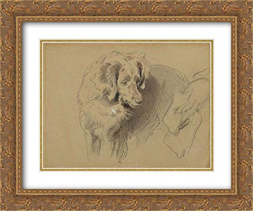 Sir Edwin Henry Landseer - 36x28 Gold Ornate Frame and Double Matted Museum Art Print - Study of a Dog