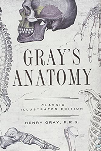 Grays Anatomy Classic Illustrated Edition Fall River Classics