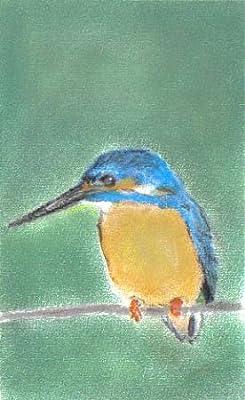 De Martín pescador en una rama de dibujo Pastel tizas para tacos ...