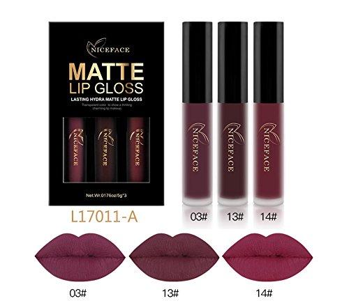 CASA SHOP 3Pcs/Lot Matte Long-lasting Lipstick Liquid Set D