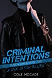 CRIMINAL INTENTIONS: Season One, Episode Two: JUNK SHOP BLUES