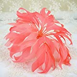 Coral Feather Flower Mount Goose Feather Fascinator Hat Accessoires for Prom Party Church Veil