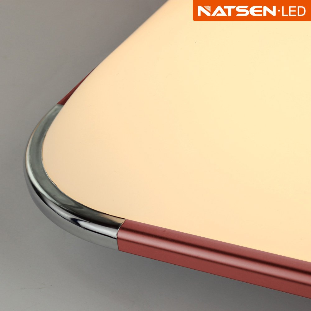 Natsen® LED Ceiling Light Modern ceiling lamp Fit Bedroom Living ...