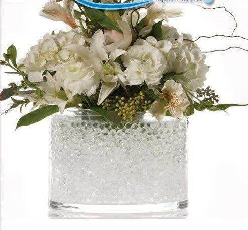 JellyBeadZ Brand 2 -12 Gram Packets of Clear Water BeadZ Gel, Makes Over 20 Cups of Beautiful Bouncy BeadZ