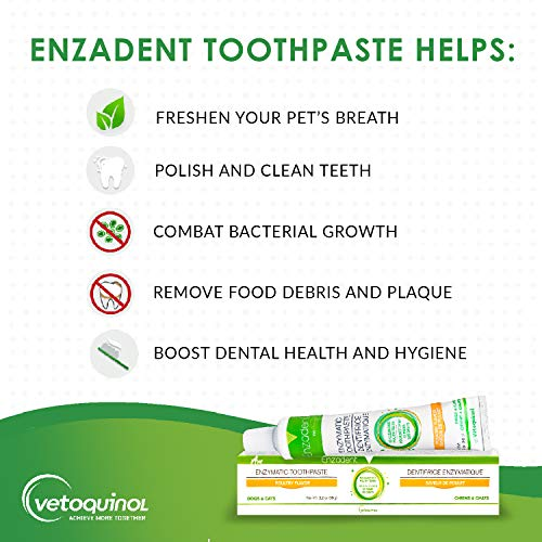 Buy toothpaste recommended by dentists