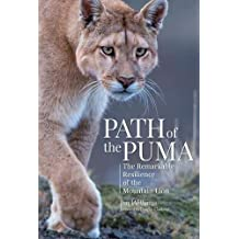 Path of the Puma: The Remarkable Resilience of the Mountain Lion