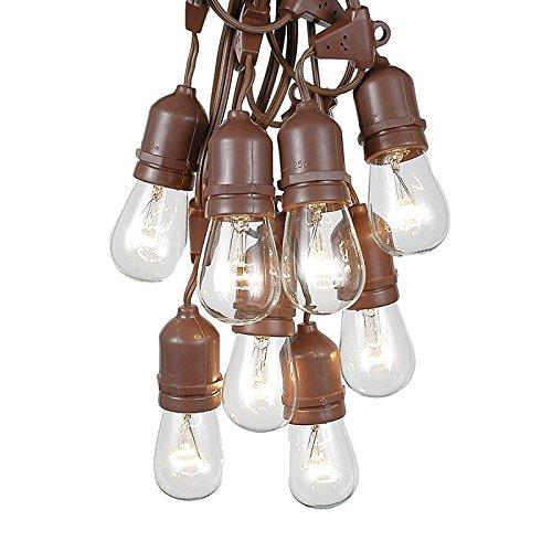 100 Foot S14 Edison Outdoor String Lights