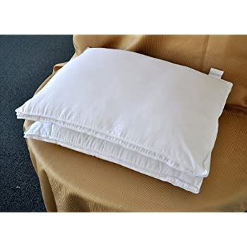 Amazon Com Natural Comfort White Microfiber Down