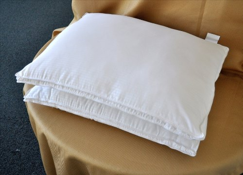 UPC 736211073815, Natural Comfort White Microfiber Down Alternative Gel Like Pillow with Embossed Covering, Small, Set of 2