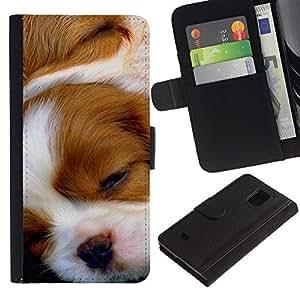 Cavalier King Charles Spaniel Puppy - la tarjeta de Crédito Slots PU Funda de cuero Monedero caso cubierta de piel Samsung Galaxy S5 Mini, SM-G800