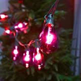 Set of 10 Glass ST40 Edison Style Bulb String Lights (Purple Edison)