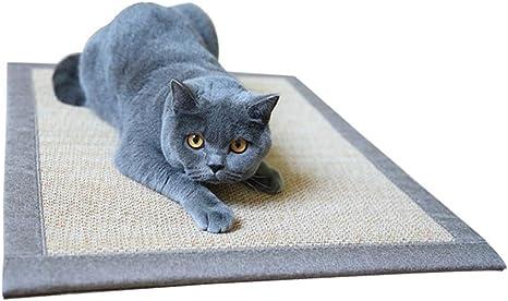 Tabla de Entrenamiento con Velcro para rascar Gatos, con alfileres ...