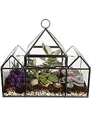 Deco Glass Geometric Greenhouse Terrarium, Succulent & Air Plant - Castle (25 x 12 x 21 cm)