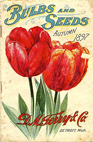 Bulbs and Seeds 1897 Retro Tulip Flower Seed Catalog Poster Home Accents Room Decor ()
