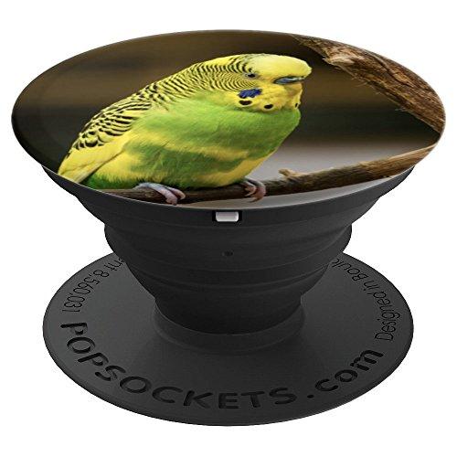 Budgerigar Parakeet Bird Birdwatcher - PopSockets Grip and Stand for Phones and Tablets