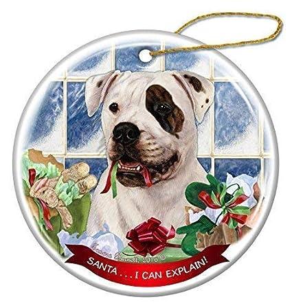 Amazon Com American Bulldog Brindle Eye Patch Dog Ceramic