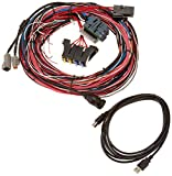 automotive relay fuse panel - AEM 30-2905-96 EMS-4 Wiring Harness with Fuse and Relay Panel