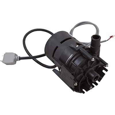 Dimension One Spas 01512-320E Hot Tub E10 Circulation Pump 230 Volts with Built-in Flow Switch : Garden & Outdoor