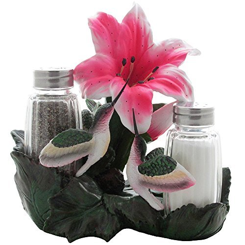 - Hummingbirds Glass Salt and Pepper Shaker Set Kitchen Decor with Decorative Holder in Bird Figurines & Hummingbird Sculptures and Floral Gift Ideas