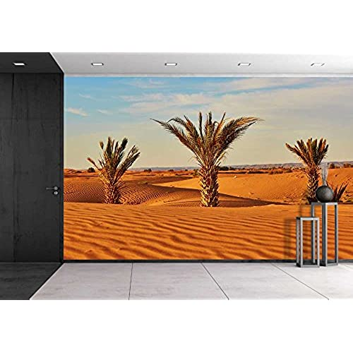 Desert Wall Murals Peel and Stick Amazoncom