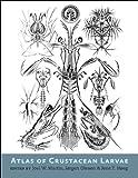 Atlas of Crustacean Larvae, , 1421411970