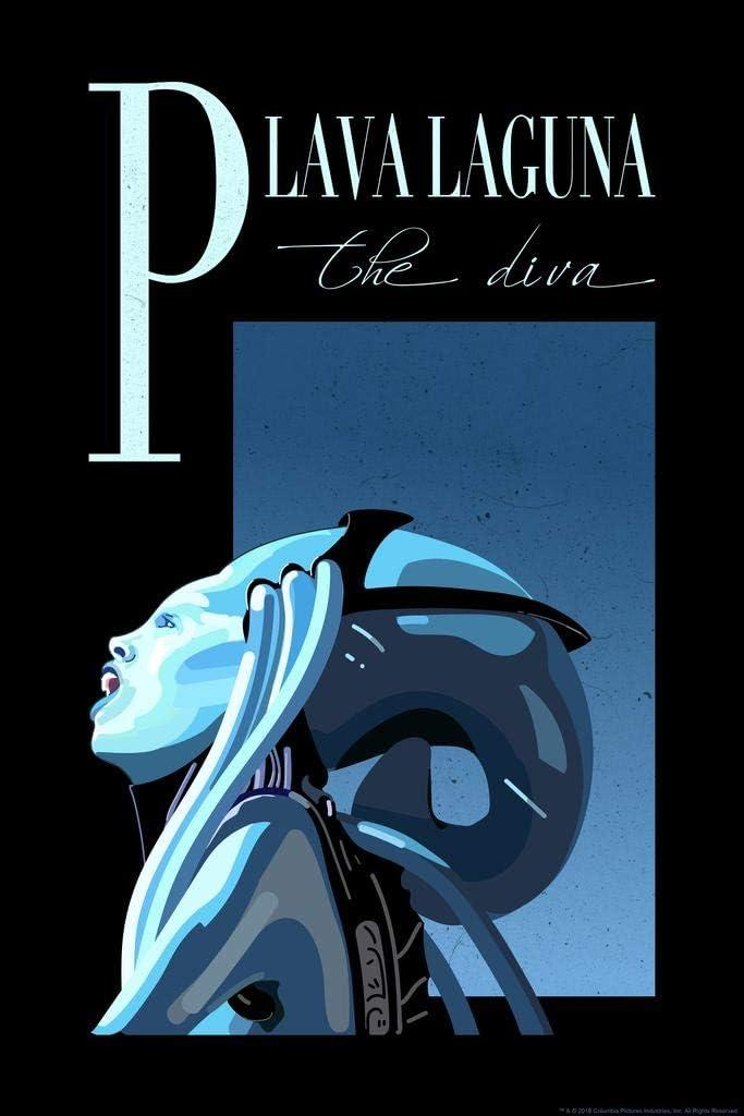 The Fifth Element Plava Laguna The Diva Concert Movie Cool Wall Decor Art Print Poster 24x36