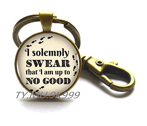 Dome Inspired (Inspired glass dome I Solemnly Swear That I Am Up To No Good Keychain Glass Cabochon Keychain,quote Keychain. quote jewelry.Y014 (2))