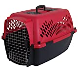Petmate 21090 Pet Taxi Fashion Kennel, Large (Samba Red/Coffee Grounds)