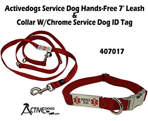 Activedogs Service Dog Hands-Free 7' Leash & Collar W/Chrome Service Dog ID Tag (Large 19