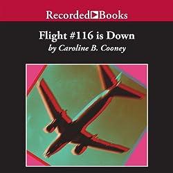 Flight #116 is Down