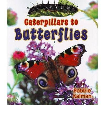 Download [(Caterpillars to Butterflies )] [Author: Bobbie Kalman] [Mar-2009] pdf
