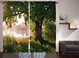 bedroom window treatment ideas Ambesonne Nature Curtains Oak Tree Decor, Mystic Landscape Foggy Scene and Stream View Painting, Window Treatments, Living Kids Girls Room Curtain 2 Panels Set, 108 X 90 Inches, Green Brown White