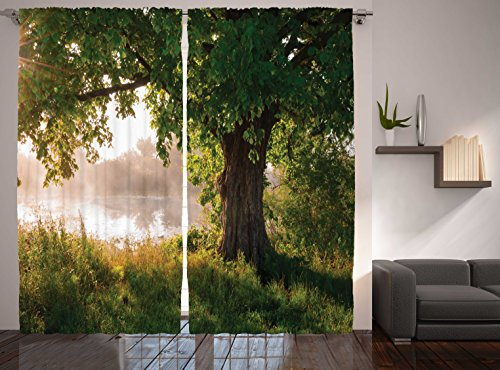 Ambesonne Nature Curtains Oak Tree Decor, Mystic Landscape Foggy Scene and Stream View Painting, Window Treatments, Living Kids Girls Room Curtain 2 Panels Set, 108 X 90 Inches, Green Brown White